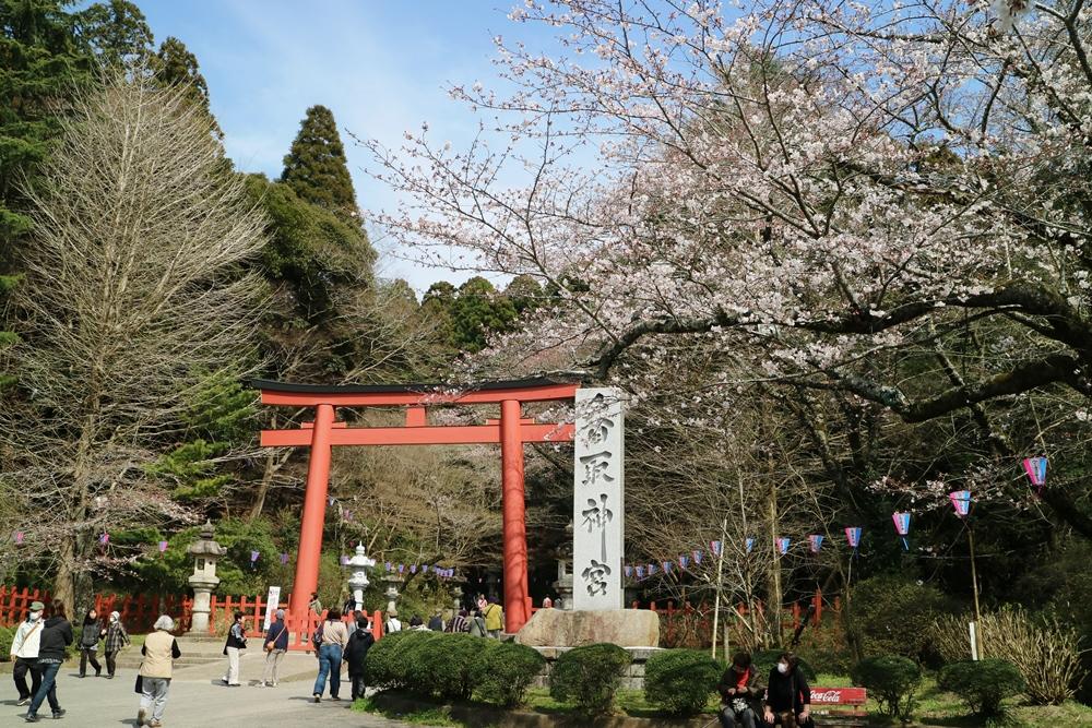 3月29日 香取神宮