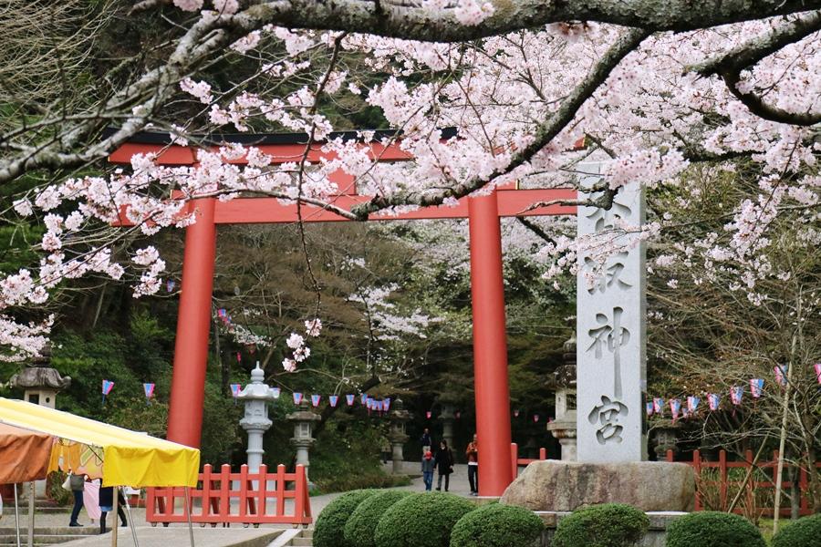 4月2日 香取神宮