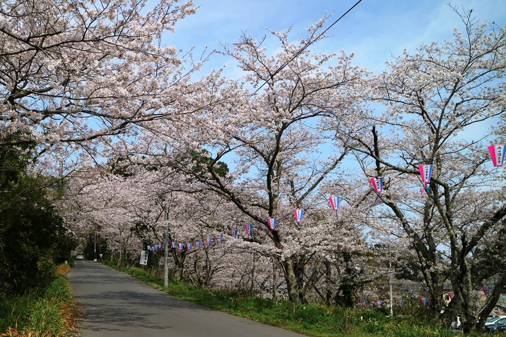4月6日 香取神宮