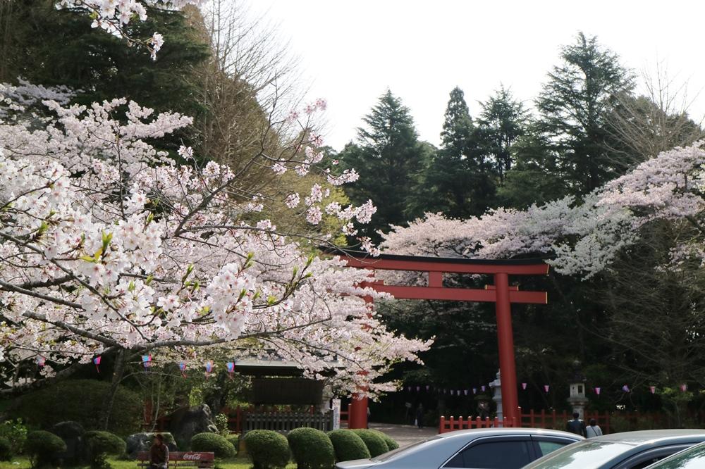 4月9日 香取神宮